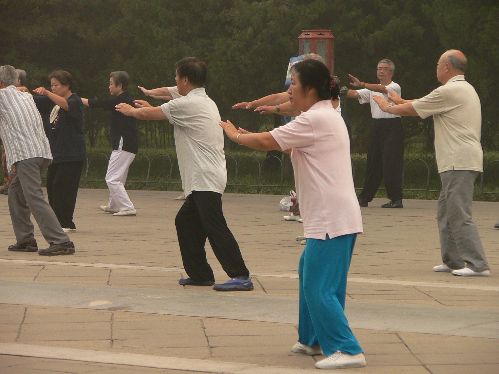 ook in Tai Chi is de wisselwerking tussen Lichaam & Geest onlosmakelijk met elkaar verbonden, weer gegeven in het Monadische logo van Yin en Yang
